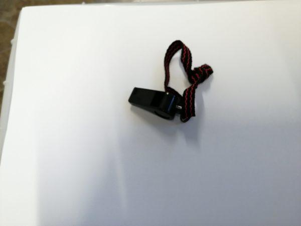 sspe20201123-2